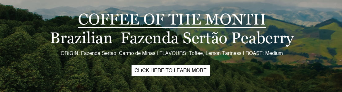 Brazil Fazenda Coffee of Month