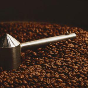 what is the best dark roast coffee?