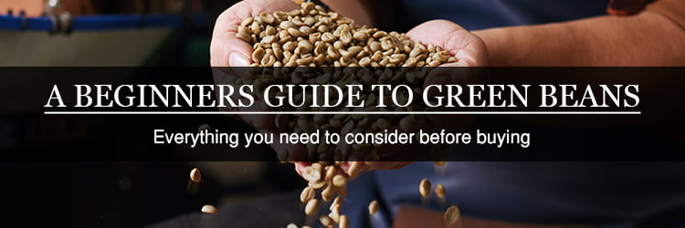 beginners guide to green coffee beans