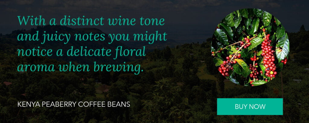 Kenya Peaberry Coffee Beans Jul-21