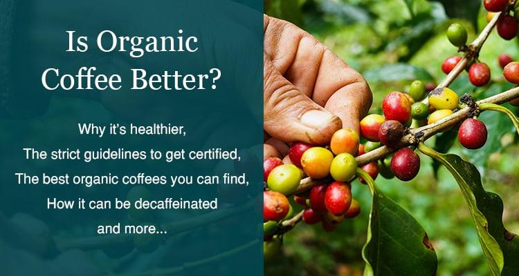 organic coffee benefits