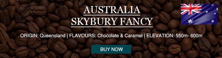 premium australia skybury fancy coffee