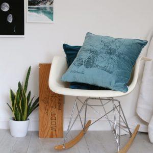 Betsy Benn Velvet Cushion