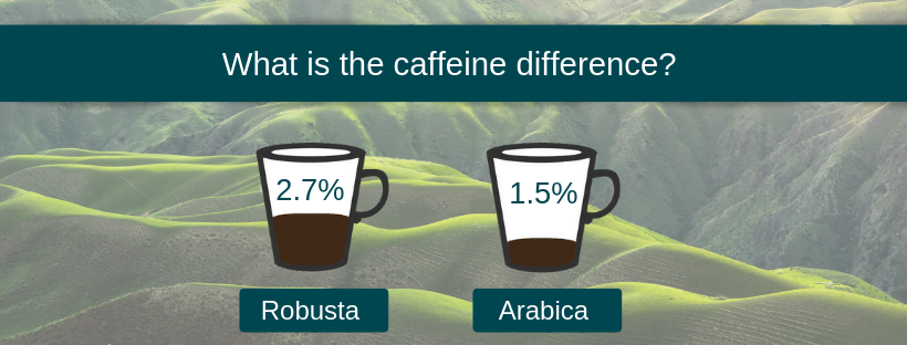 Arabica vs Robusta caffeine