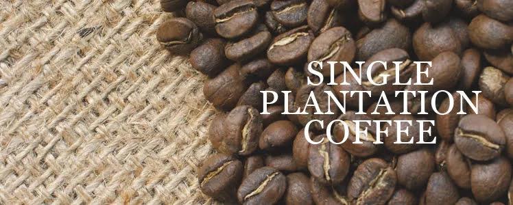 single plantation coffee