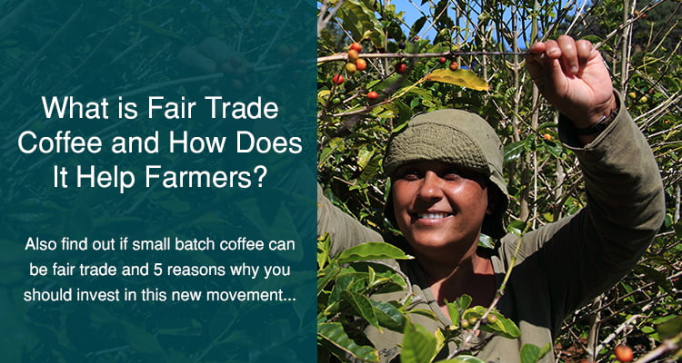 what is fair trade coffee