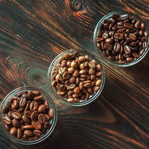 Which is the best coffee – Arabica or Robusta?