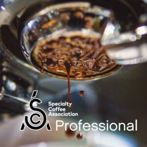 SCA Barista Professional