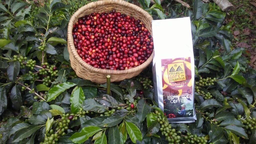 Francini Farm Coffee Beans