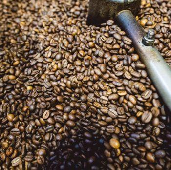 Exploring the Brazilian Coffee Industry