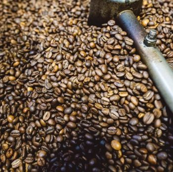 Exploring the Brazilian Coffee Industry